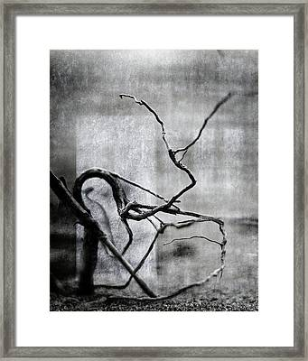 Time Sighs Framed Print