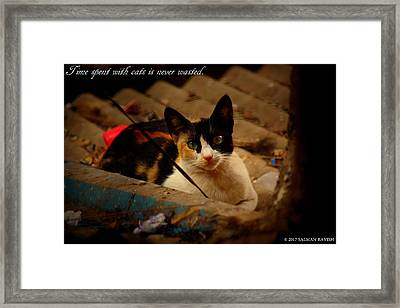 Time Spent With Cats. Framed Print by Salman Ravish