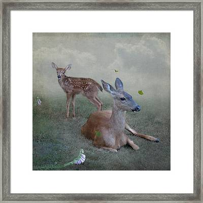 Time Stops For Deer Framed Print