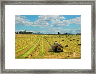 Time To Bale Framed Print by Mike Dawson