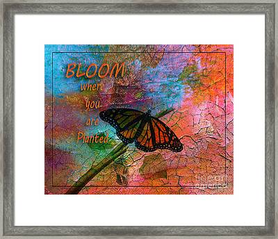 Time To Bloom By Beverly Guilliams Framed Print by Beverly Guilliams
