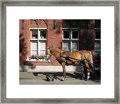 Time To Rest Framed Print by David L Griffin