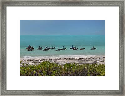 Time To Unwind  Framed Print