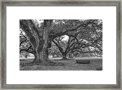 Time Travel Bw Framed Print
