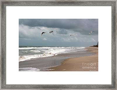 Timeless Framed Print by Megan Dirsa-DuBois