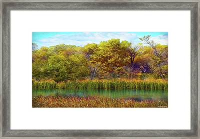 Timeless Pond Framed Print