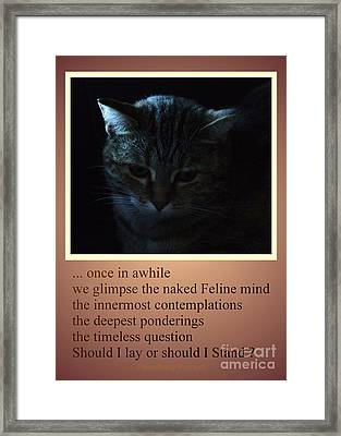 Timeless Question Framed Print