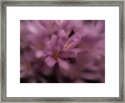 Framed Print featuring the photograph Timeless by Richard Cummings