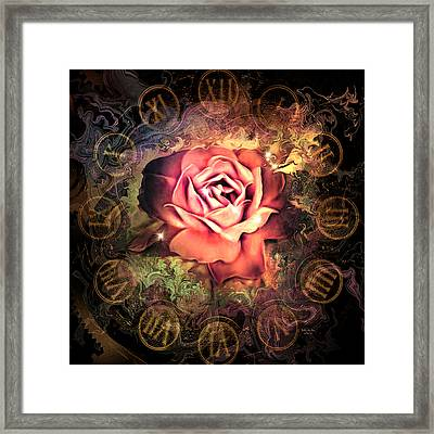 Timeless Rose Framed Print