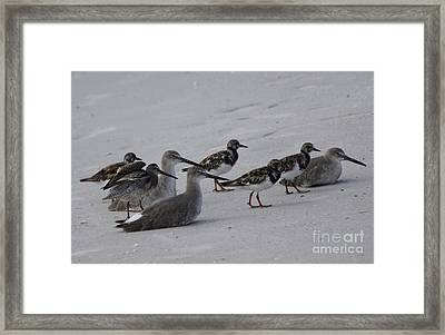 Timeout Framed Print by Philip Bracco