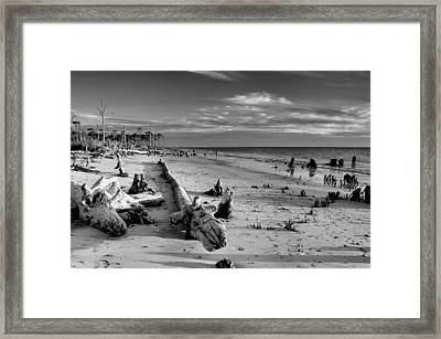 Timess Florida Coast  Framed Print by Rich Leighton