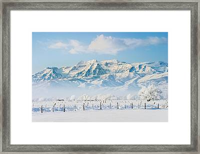 Timp In Winter Framed Print