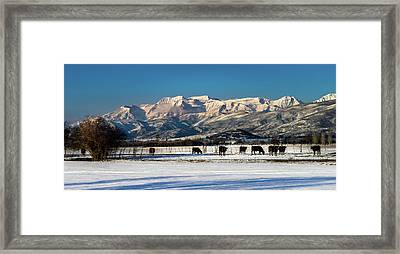 Timpanogos From The North Fields Framed Print