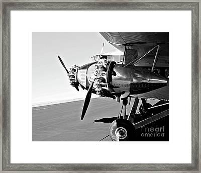 Tin Goose 2 Framed Print