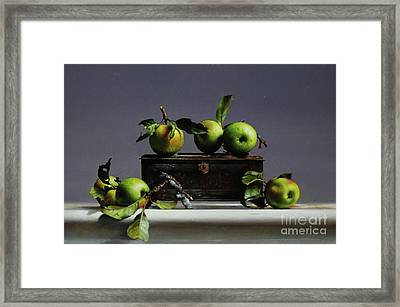Tin With Wild Apples Framed Print by Larry Preston