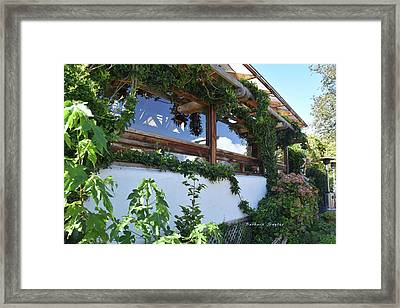 Tinker Bell At Robins In Cambria California Framed Print by Barbara Snyder