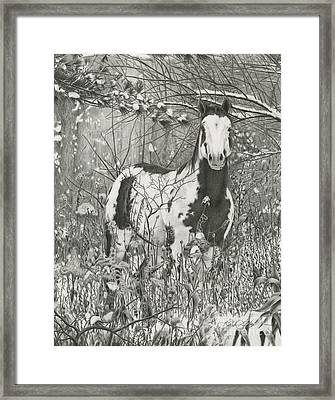 Tinman Framed Print