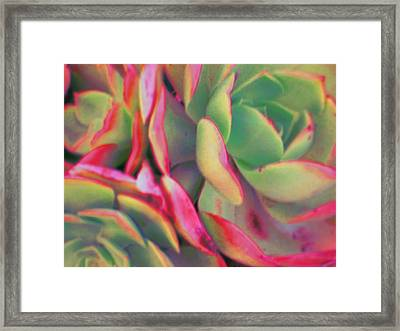Tinted Clusters Framed Print