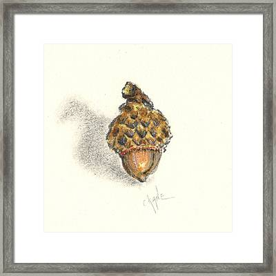 Tiny Acorn Framed Print by Christine Camp