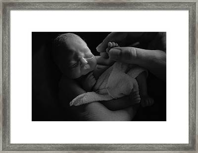 Tiny Fingers Framed Print