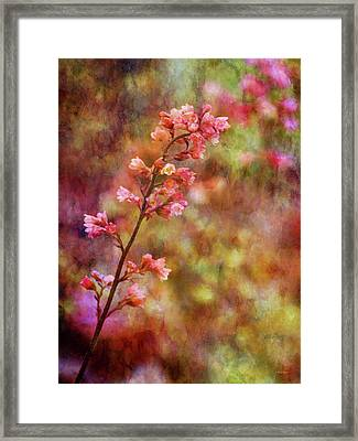 Tiny Gems 1345 Idp_2 Framed Print