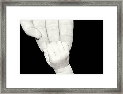 Tiny Grip Framed Print