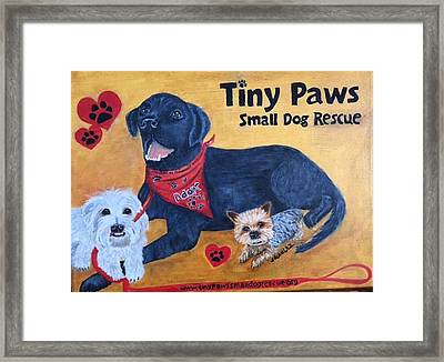 Tiny Paws Small Dog Rescue Framed Print by Sharon Schultz