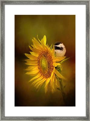 Tiny Surprise Bird Art Framed Print