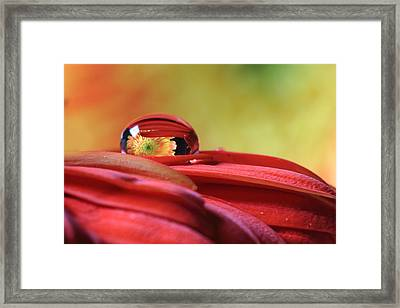 Tiny Water Drop Reflections Framed Print