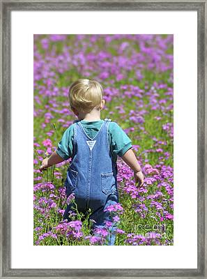 Tiny Wonders Framed Print