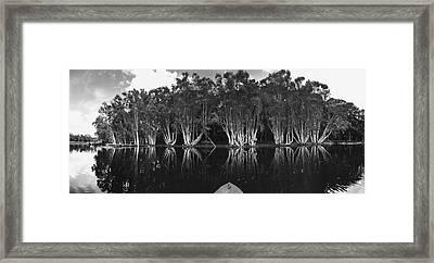 Tip Of The Kayak Framed Print by Tara Miller