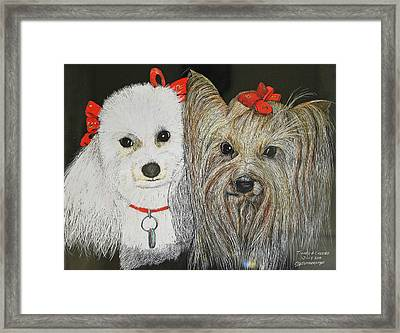 Tipper And Chelsea Framed Print