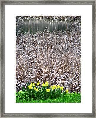 Tipping Into Spring Framed Print by Debra     Vatalaro