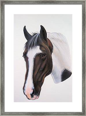 Tippy Framed Print by Lucy Deane