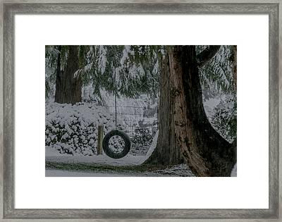 Tire Swing In Winter Framed Print by E Faithe Lester