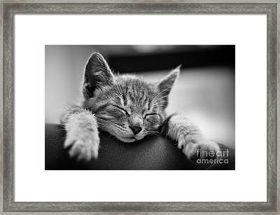 Tired .... So Tired Framed Print by Alessandro Giorgi Art Photography