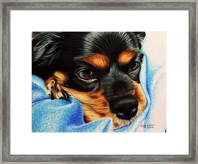 Tired Puppy Framed Print by Peggy Osborne