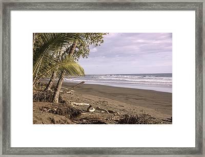 Tiskita Pacific Ocean Beach Framed Print