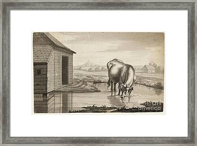 Title A Cow Standing In A Pool Beside  Framed Print by MotionAge Designs