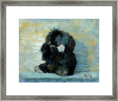 Titli Bear Framed Print by Ann Radley
