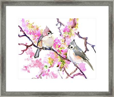 Titmice And Cheery Blossom Framed Print by Suren Nersisyan