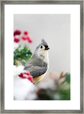 Framed Print featuring the photograph Titmouse Bird Portrait by Christina Rollo