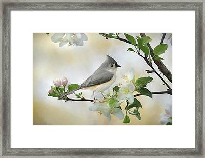 Framed Print featuring the mixed media Titmouse In Blossoms 1 by Lori Deiter