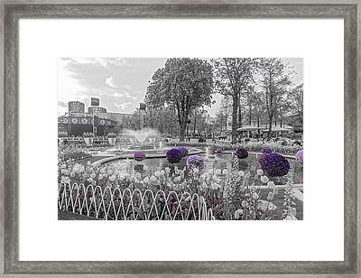 Tivoli Gardens Singled Out Framed Print