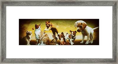 To Be Young Framed Print