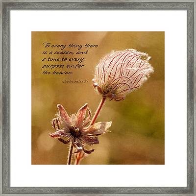 To Everything A Season Framed Print by Mary Jo Allen
