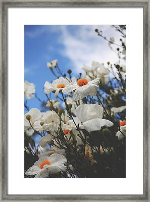 To Feel Your Love Framed Print