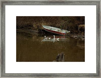 To Float Or Not To Float Framed Print