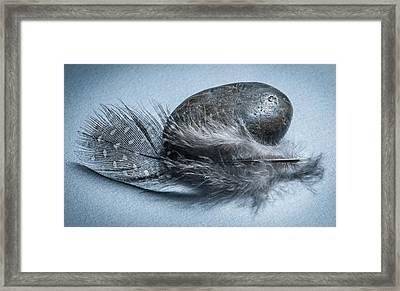 To Heal A Broken Heart  Framed Print by Maggie Terlecki