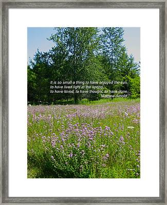 To Live Light In The Spring Framed Print